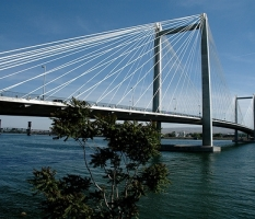 Cable Bridge Tri Cities